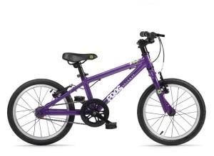 Frog-48-purple