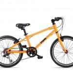 Frog-55-orange