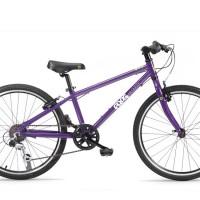 Frog-62-purple